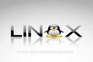 لینوکس